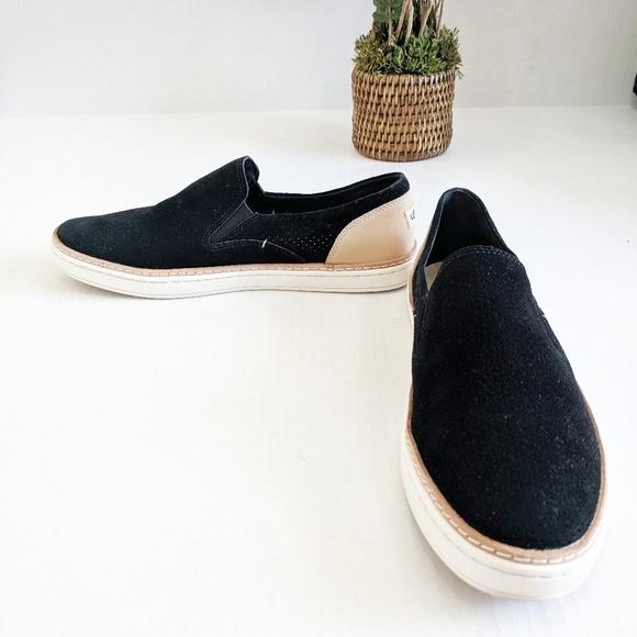 Black Suede Adley Perf Fashion Sneaker